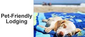 Islander Inn Ocean Isle Beach Pet Friendly