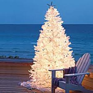 Ocean Isle Beach and Sunset Beach Christmas Events