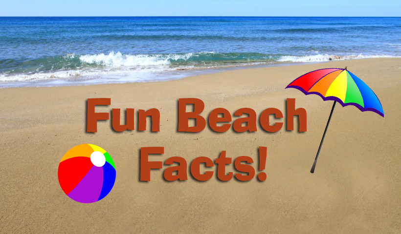 Fun Facts About Beaches Ocean Isle Beach North