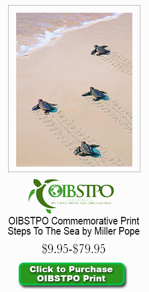 OIBSTPO Print