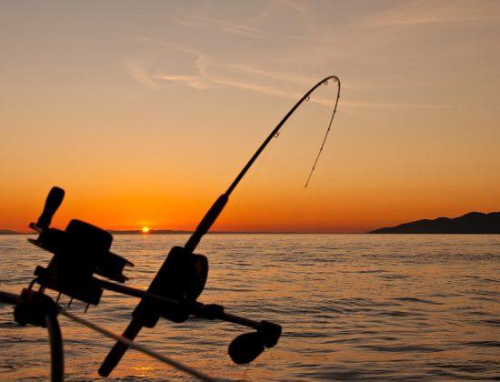 Capt. Brant's Fishing Adventure